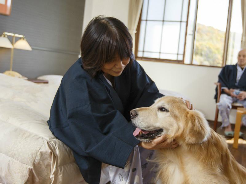 【ペット洋室】お部屋で愛犬とお寛ぎ下さい