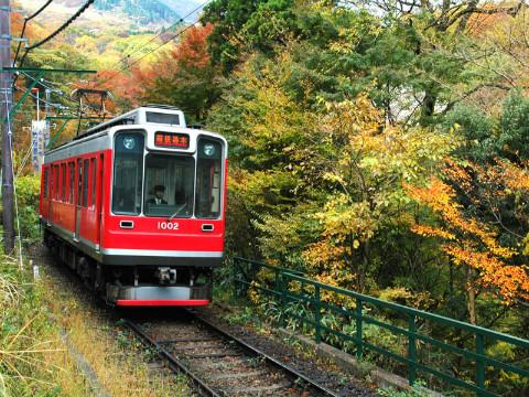 登山電車と紅葉