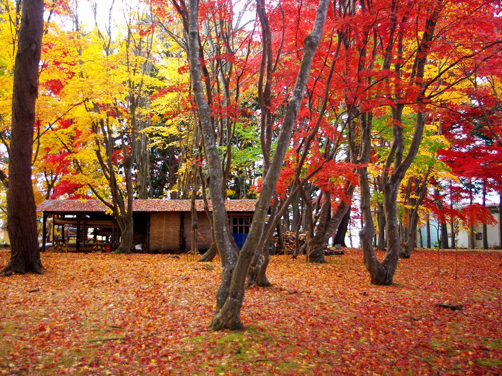 【秋の香雪園】紅葉の名所として知られる香雪園は当館より車で約10分。