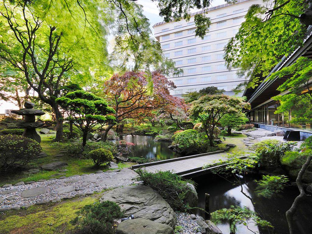 【松岡庭園】当館中庭の日本庭園には、つつじや松など樹齢百四年を数える樹木も。