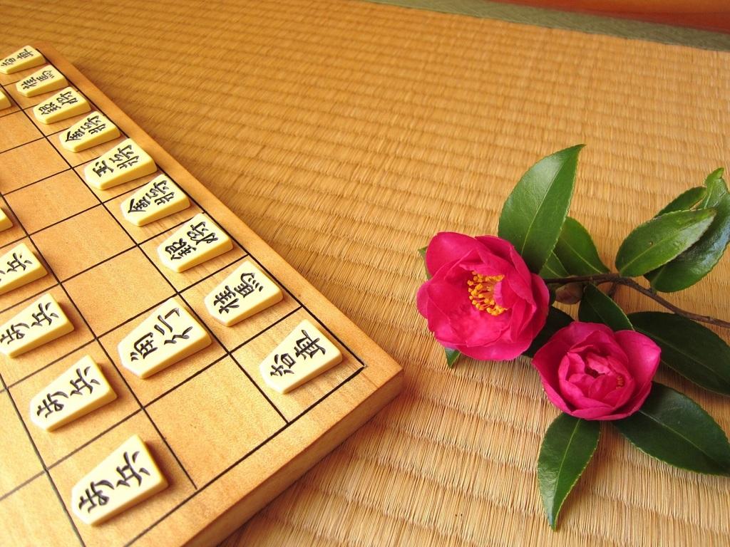 将棋セットを無料貸し出し致します。お部屋でごゆっくりとお楽しみ下さい。