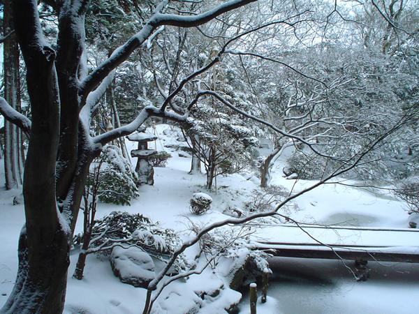 【松岡庭園・冬】当館自慢の日本庭園。雪に覆われる姿もまた美しく、趣きがあります。