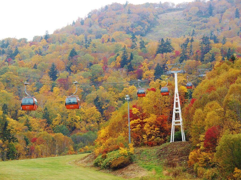 札幌国際スキー場紅葉ゴンドラ