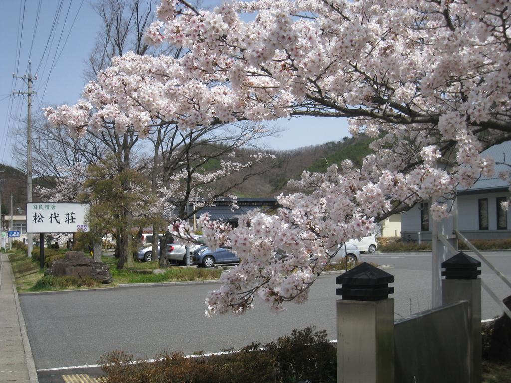当荘入口に彩る桜です