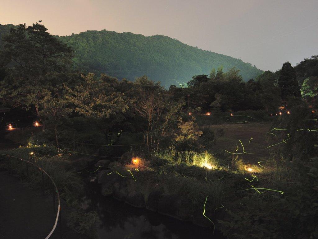 奈良本けやき公園