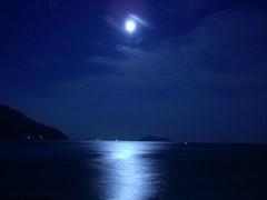 湖面に映る月
