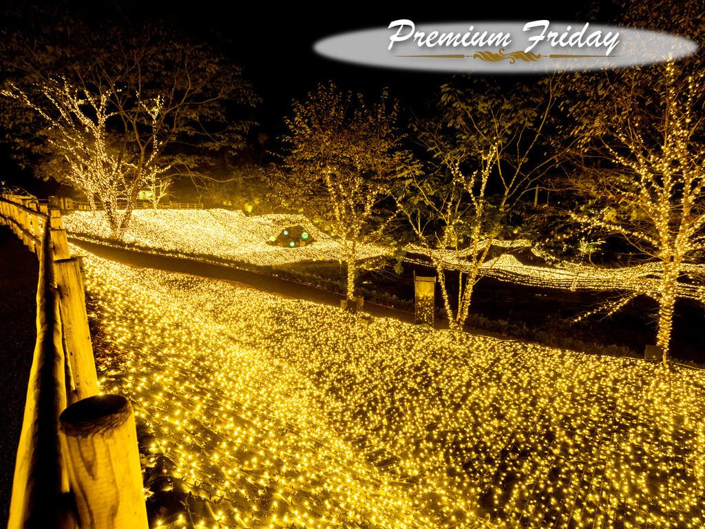 【Premium Friday】