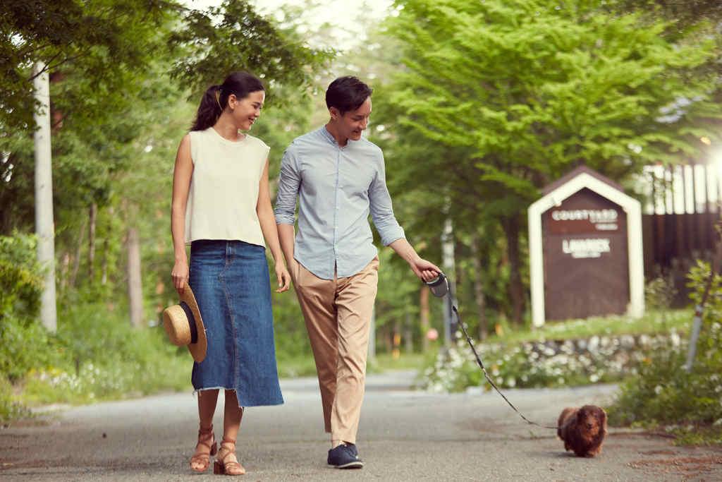 愛犬とお散歩