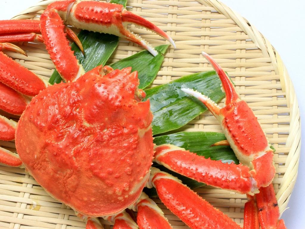 プラン特典【浜湯でズワイ蟹】