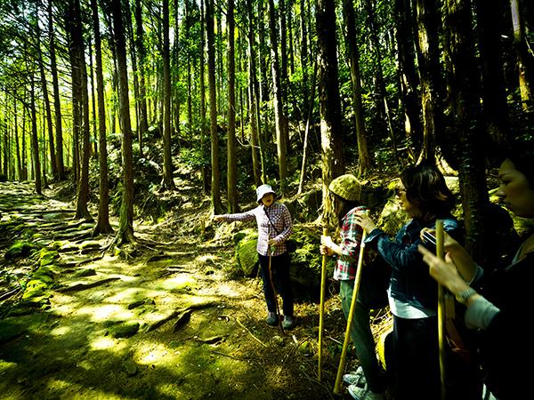 【1月-2月限定!無料ご招待】世界遺産「熊野古道」を巡るツアー