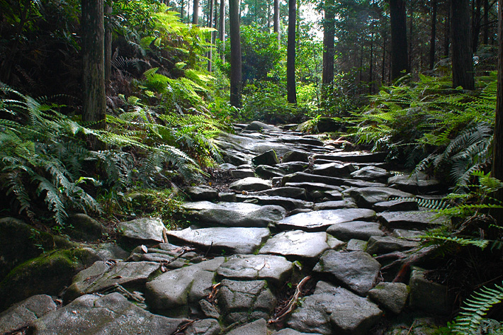 美しい景観の世界遺産『熊野古道』