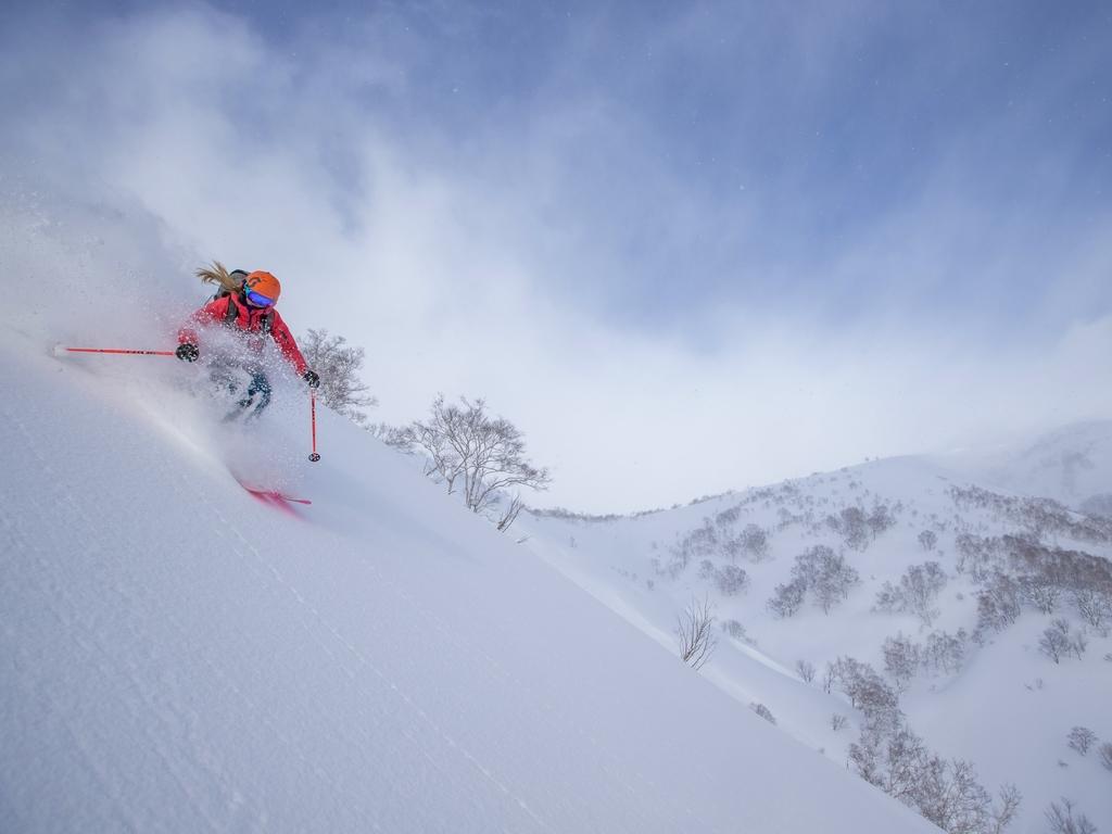 スキープラン販売開始!