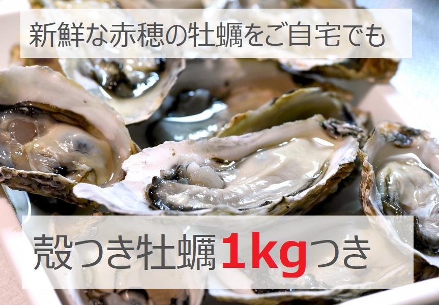 ご自宅でも赤穂の牡蠣が楽しめます♪※画像はイメージです。