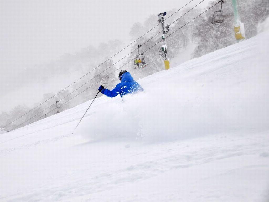 ゆっくりとリラックスしながら滑りたい初心者から、ダイナミックに滑り降りたい上級者まですべてのスキーヤーが満足できる多彩な