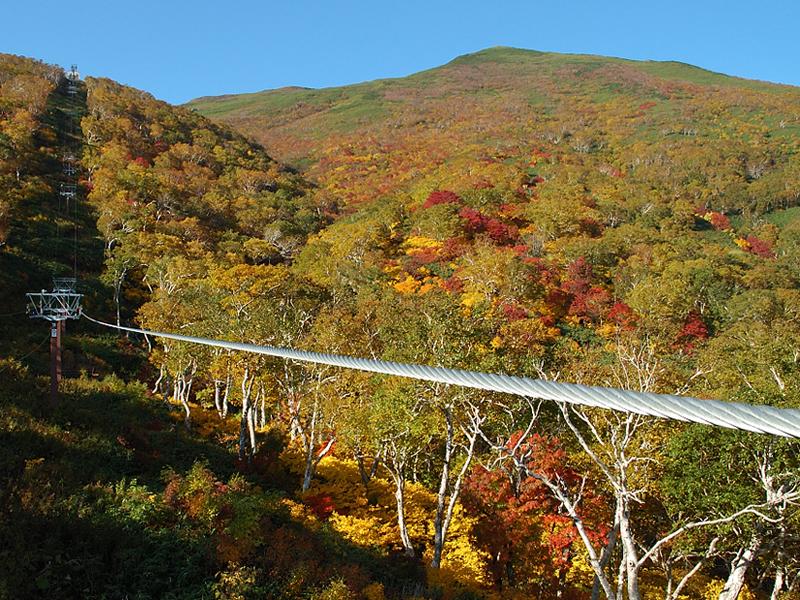 ゴンドラに乗って、紅葉に染まる山々を空中から楽しむことも♪