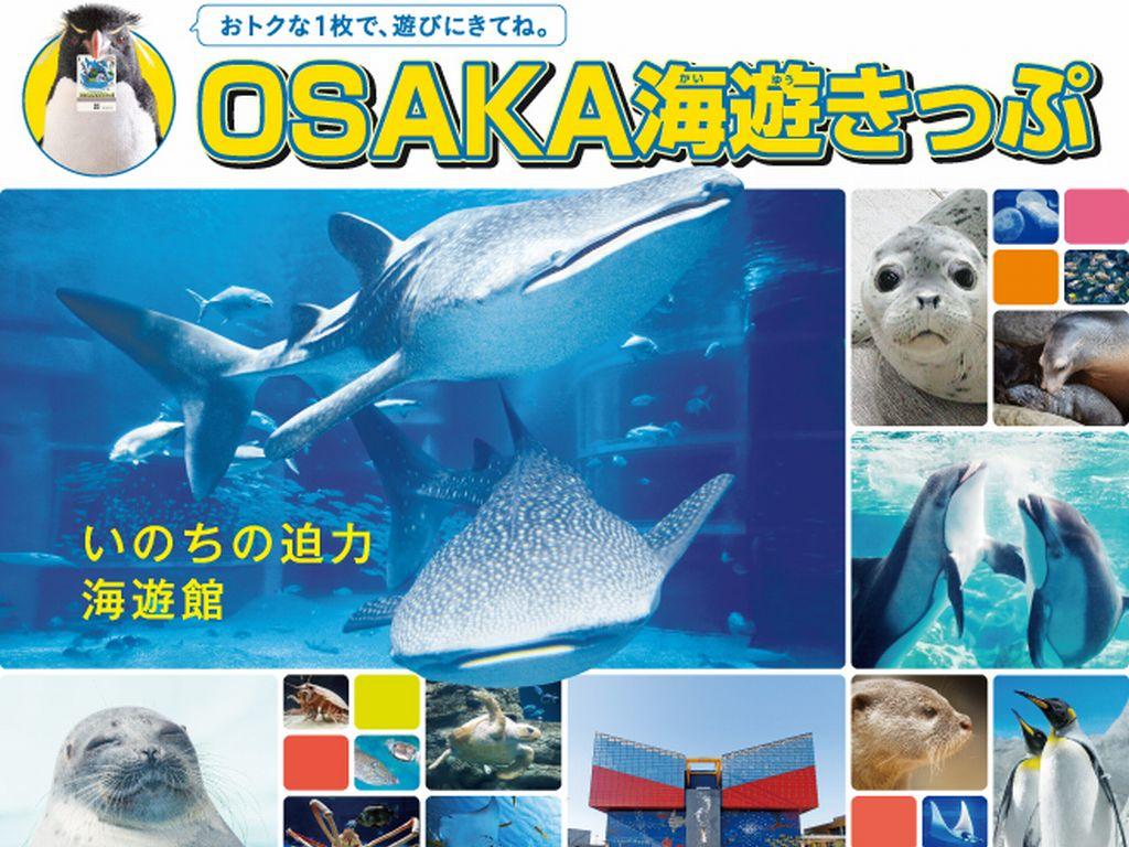osaka海遊きっぷ
