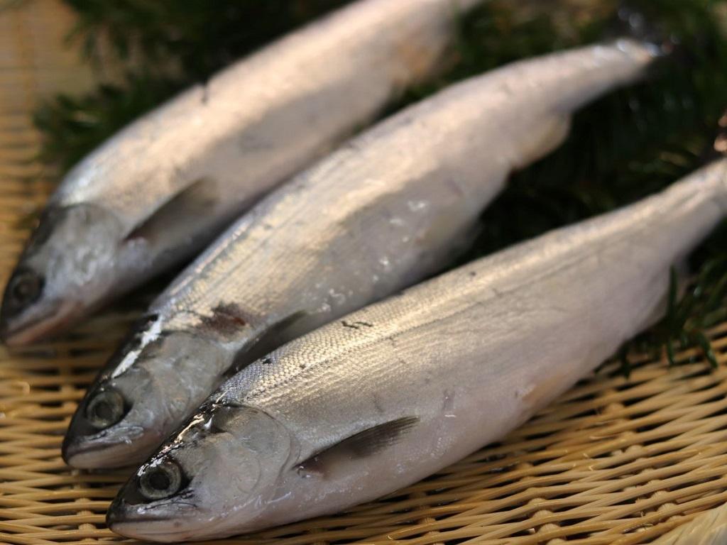 北海道の旬の食材を厳選。7月は「チップ」もお愉しみくださいませ。