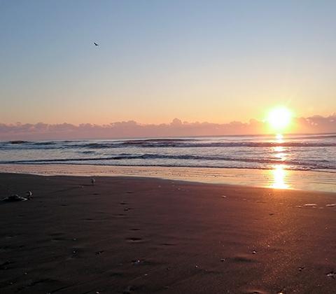 本州で2番目に早く昇る、大自然を感じる初日の出