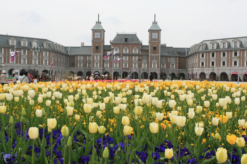 春にはチューリップなどのお花をお楽しみいただけます