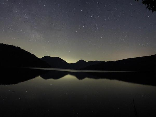 【ナイトウオッチング】人工の灯りが届かないまっくらな世界へ。自然を身近に感じられる夜の貴重な体験を。