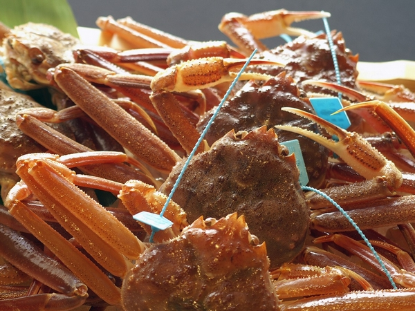 タグ付きブランド蟹イメージ