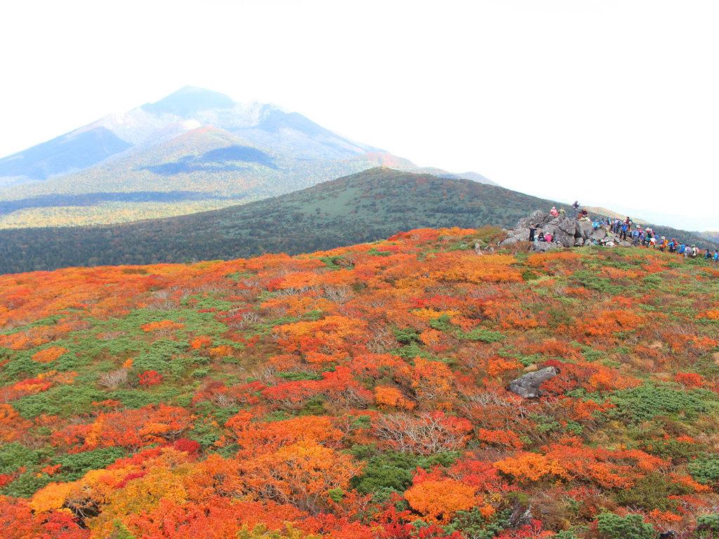 【三ツ石山】本州で一番早いと言われる紅葉をお楽しみください。