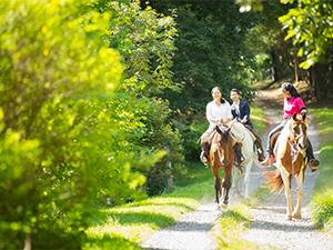 カナディアンキャンプ八ヶ岳でお手軽乗馬体験プラン