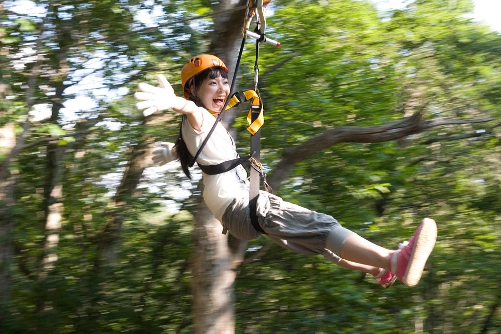 ジップライン ひるがのピクニックガーデン内 森の中をターザン気分で滑空する自然アクティビティ!