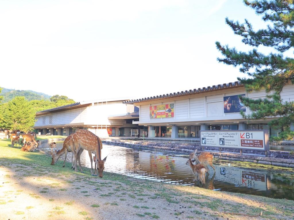 奈良国立博物館 ホテルより徒歩約15分