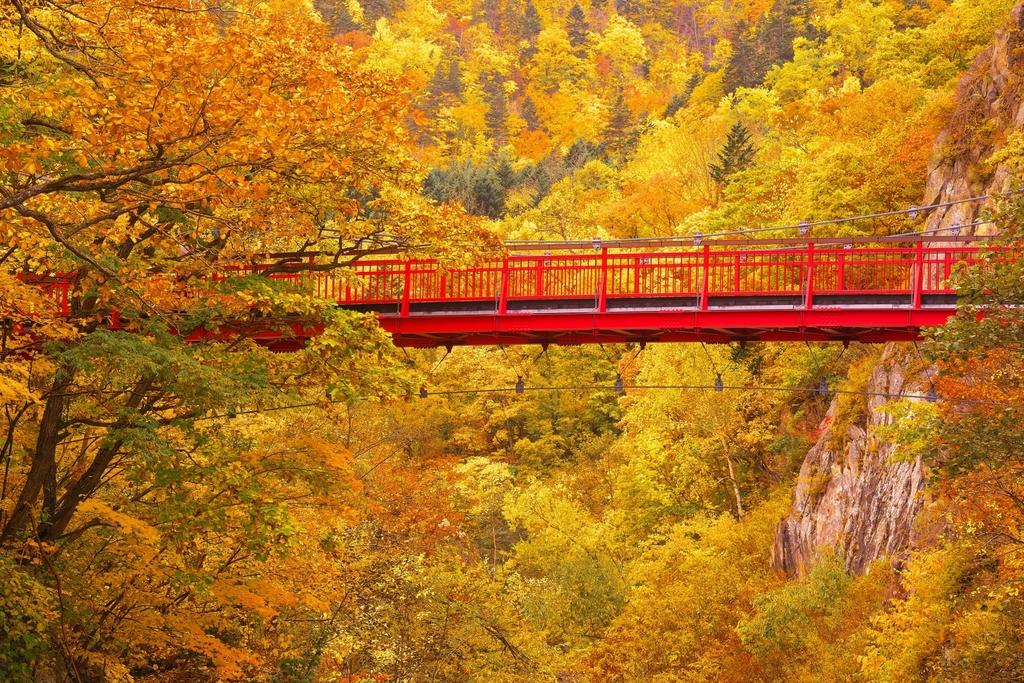 晩秋に染まる二見橋の紅葉