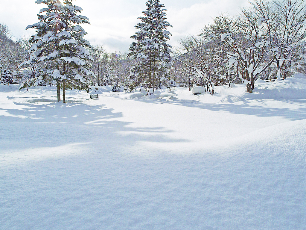 【庭園】冬の魅力も楽しんで