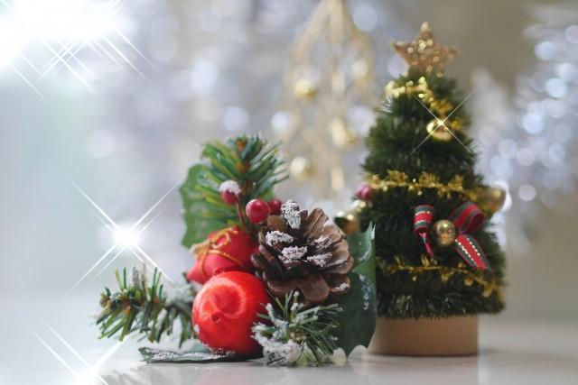 クリスマス限定プラン♪
