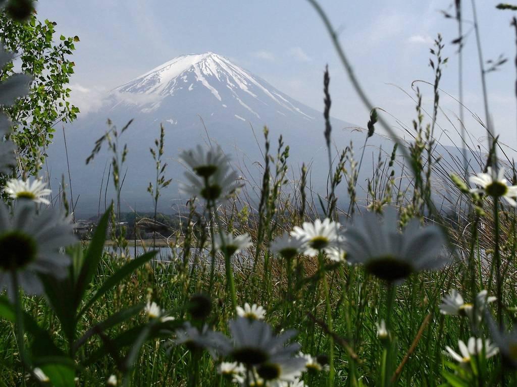 富士山绝美景致
