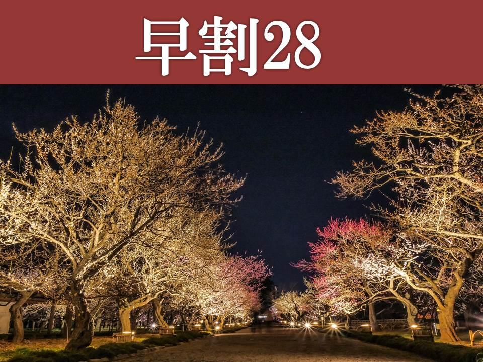 【偕楽園・春】光の散歩道
