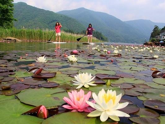 静かな湖面をパドリング♪季節ごとに違う景色をお楽しみください