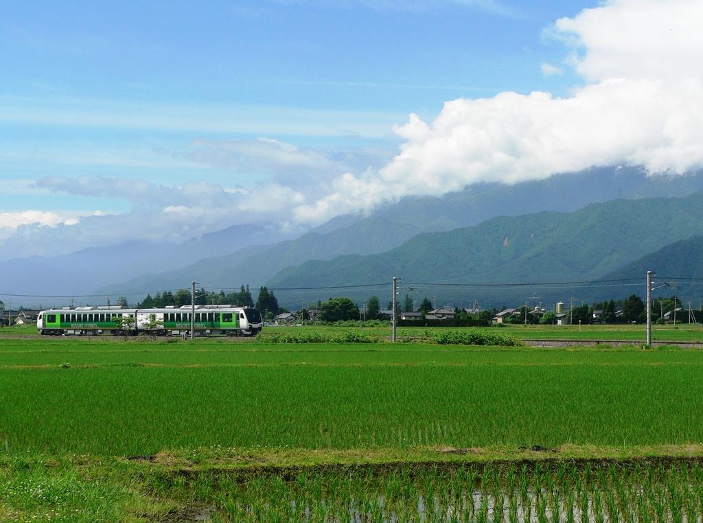 車窓から眺める自然豊かな風景もきっと良い思い出になります