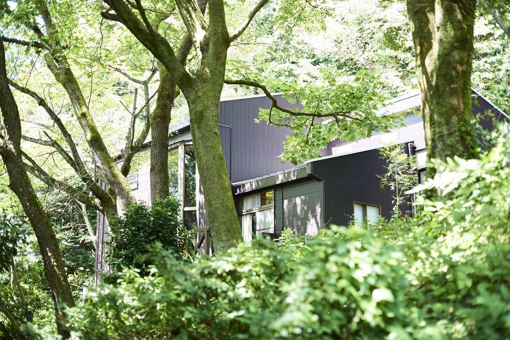 木立の中の宿泊棟