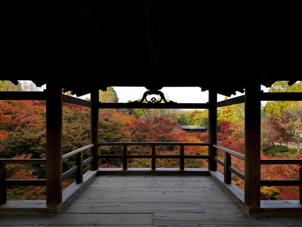東福寺夜間拝観