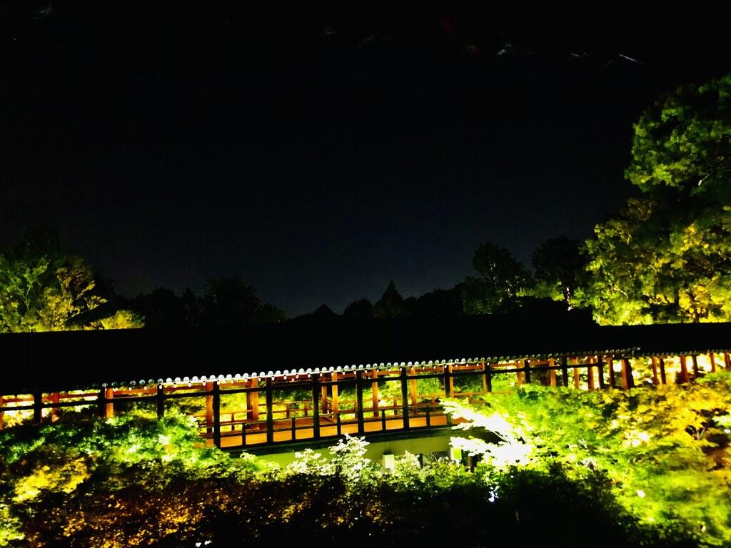 東福寺ライトアップ