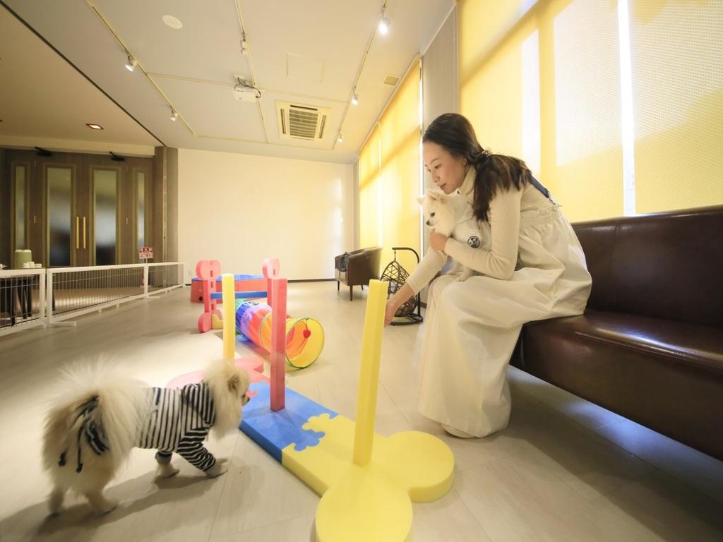 愛犬と泊まれる温泉宿のタイムセール