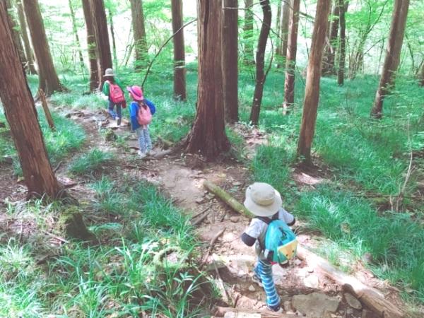 湯ノ湖周辺には専用ハイキングコースも!