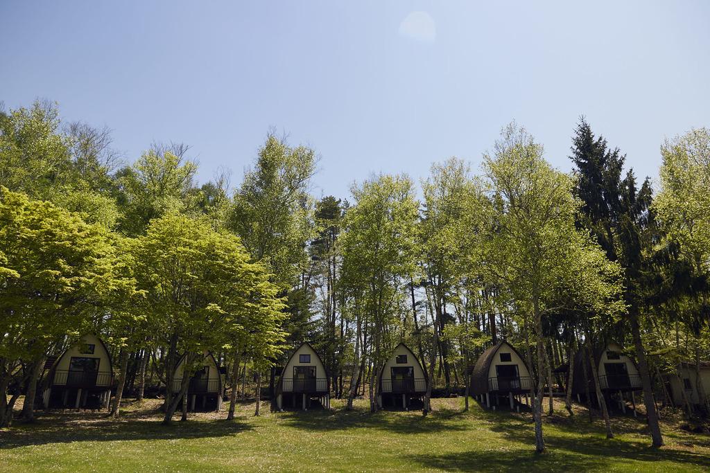 キャンプエリア/キャビン・テントサイト