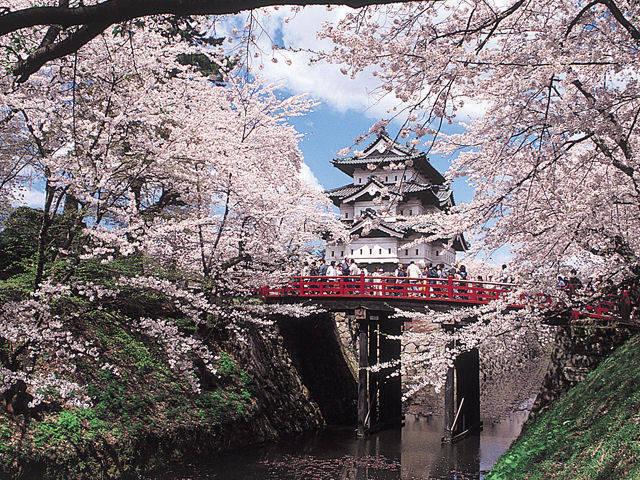 弘前城のさくらまつり
