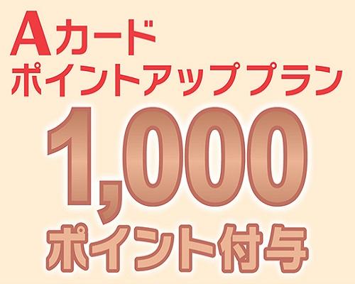 Aカードポイント1,000ポイント