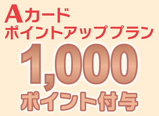 1000ポイントアップ