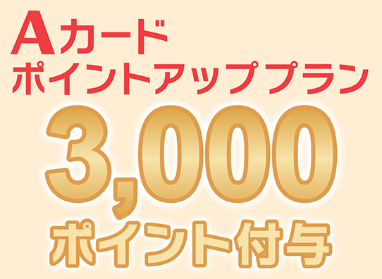 3000ポイントアップ