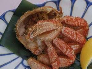嬉しい食べ切りサイズの半身毛蟹♪