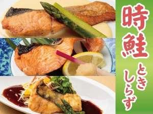 【6〜8月】旬の逸品!時鮭(トキシラズ)