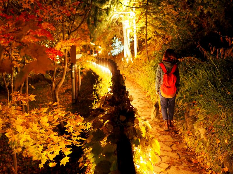 『Jozankei Nature Luminarie』by NAKED 〜灯りと遊ぶ散歩道〜
