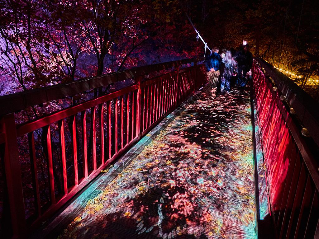 【定山渓ネイチャールミナリエ】夜の幻想散策♪